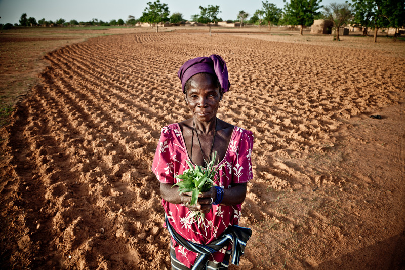 photo of woman holding greens in a field